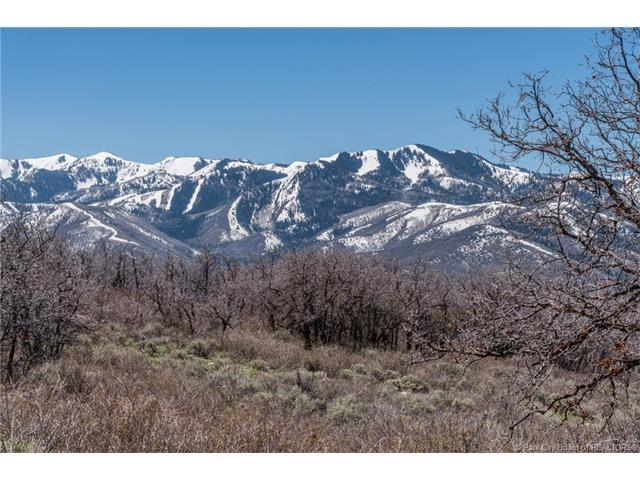 2426 Preserve Drive, Park City, UT 84098 (MLS #11701514) :: High Country Properties