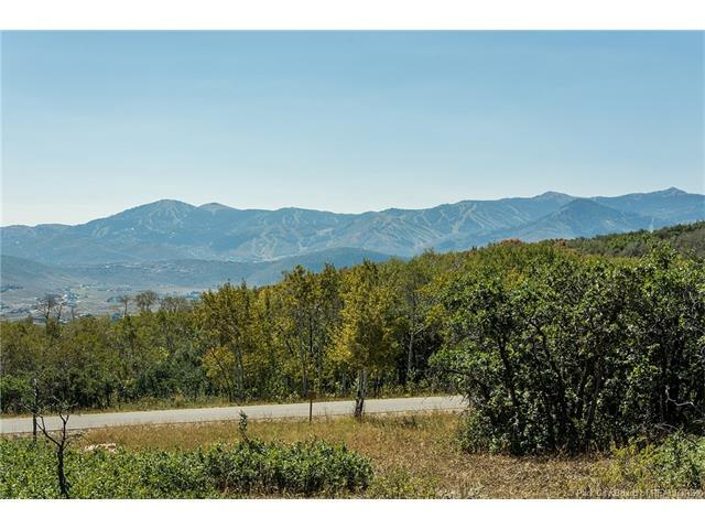 1520 Preserve Drive, Park City, UT 84098 (MLS #11701572) :: High Country Properties