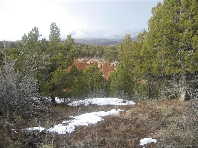 46090 Little Elk Road, Other City - Utah, UT 84027 (MLS #11702796) :: High Country Properties