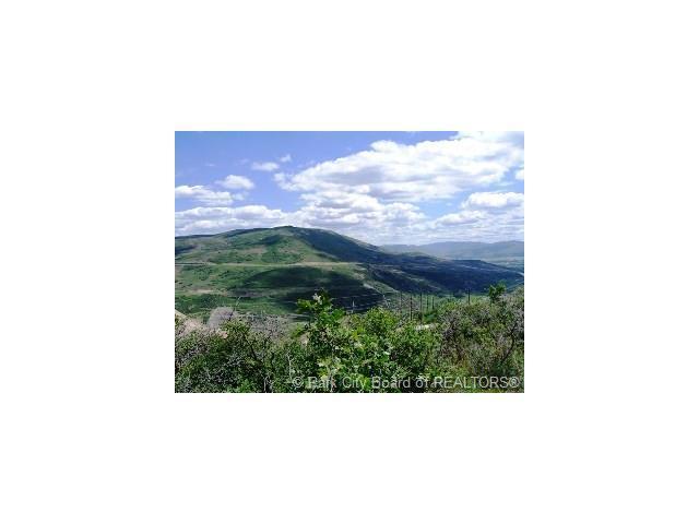 2 Deer Springs, Heber City, UT 84032 (MLS #11702962) :: High Country Properties