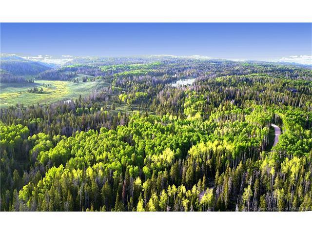 3106 Monviso Trail, Kamas, UT 84036 (MLS #11703330) :: Lawson Real Estate Team - Engel & Völkers
