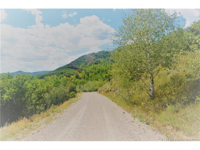 131 Mt. Aire Lower Loop, Oakley, UT 84055 (MLS #11703338) :: Lawson Real Estate Team - Engel & Völkers