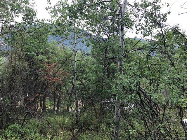 135 Comanche Pass, Oakley, UT 84055 (MLS #11703365) :: Lawson Real Estate Team - Engel & Völkers