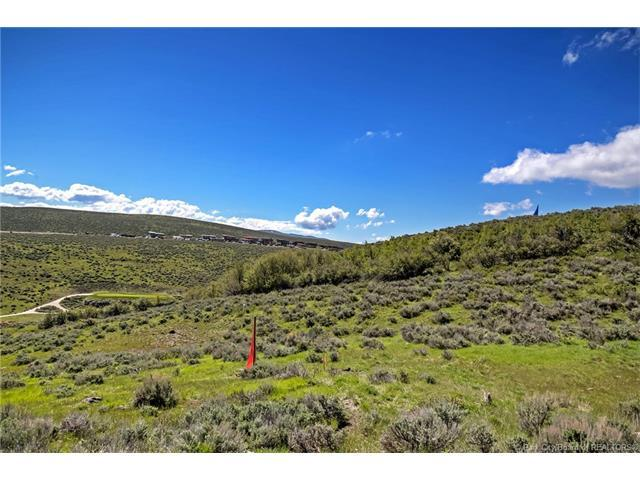 6730 Painted Valley Pass, Park City, UT 84098 (MLS #11703672) :: High Country Properties