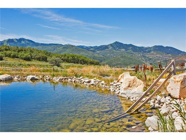1860 Red Hawk Trail, Park City, UT 84098 (MLS #11703709) :: High Country Properties