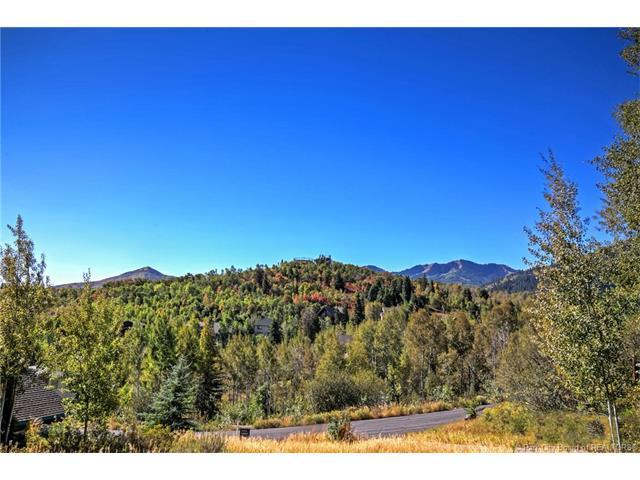 8741 N Gorgoza Drive, Park City, UT 84098 (MLS #11703943) :: Lawson Real Estate Team - Engel & Völkers
