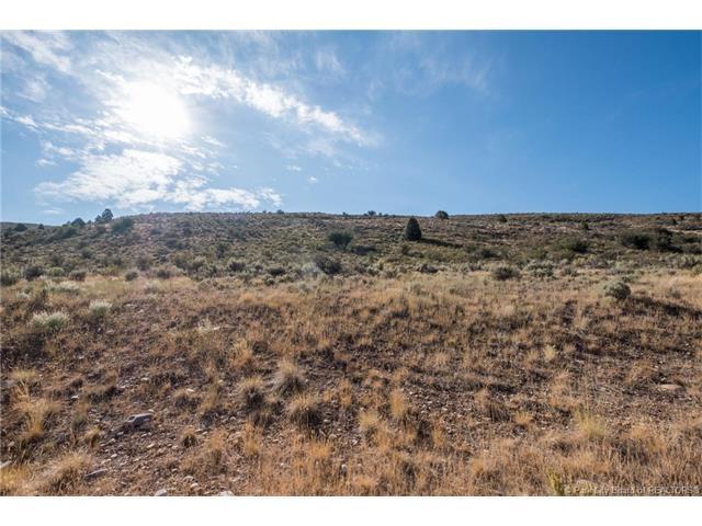 6770 Cliff View Court, Kamas, UT 84032 (MLS #11704008) :: High Country Properties