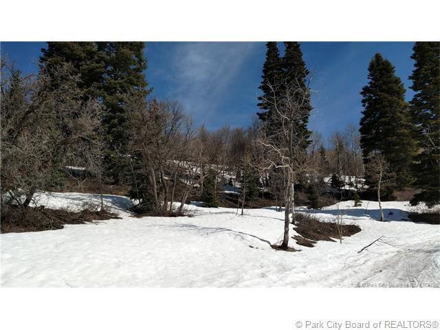 72* W Upper Cove Road, Park City, UT 84098 (MLS #11704510) :: High Country Properties