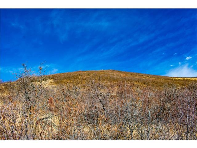 1391 W Lucerne Dr #41, Midway, UT 84049 (MLS #11704549) :: High Country Properties