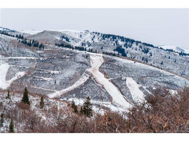 1445 Seasons Drive, Park City, UT 84060 (MLS #11704645) :: Lawson Real Estate Team - Engel & Völkers