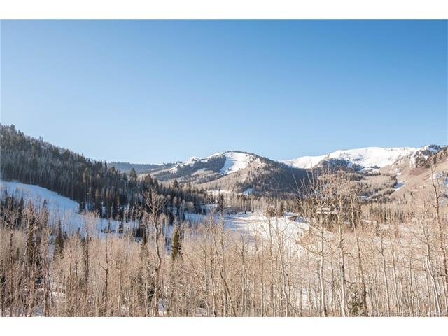 246 White Pine Canyon Road, Park City, UT 84060 (MLS #11704920) :: High Country Properties