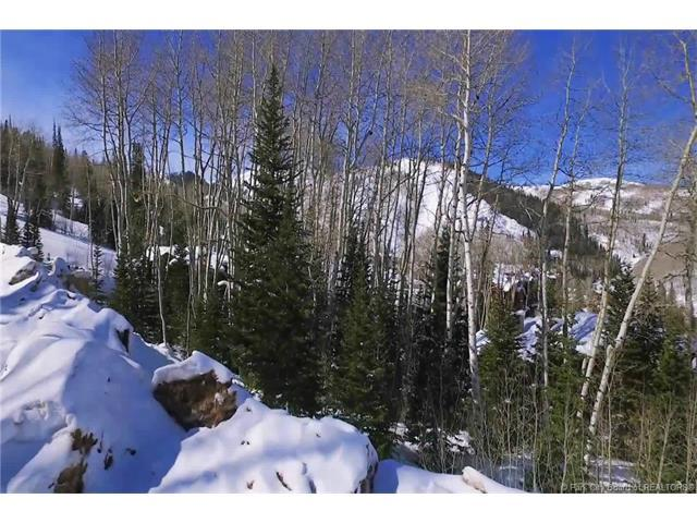 85 Silver Strike Trail, Park City, UT 84060 (MLS #11800026) :: High Country Properties