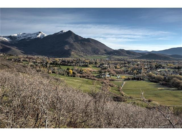 500 South 850 West, Midway, UT 84049 (MLS #11800197) :: High Country Properties