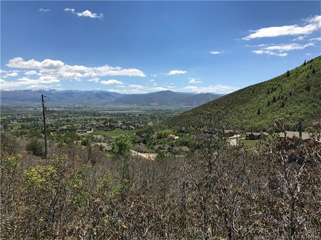 1259 N Hillside Drive, Midway, UT 29582 (MLS #11800359) :: The Lange Group