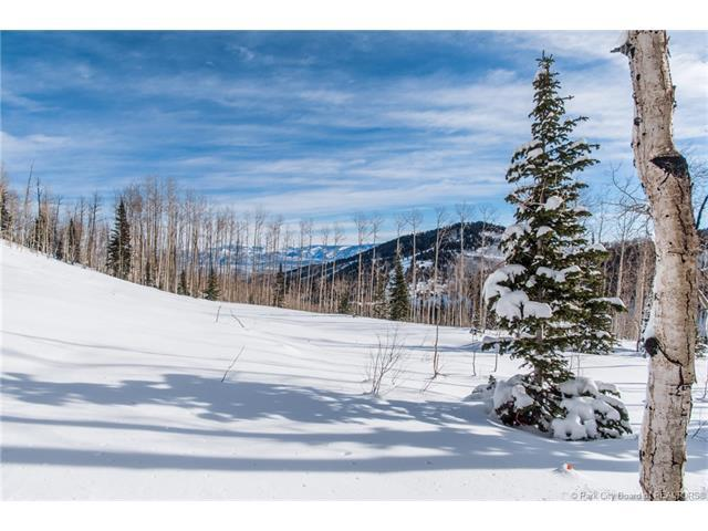 95 White Pine Canyon Road, Park City, UT 84060 (MLS #11801535) :: The Lange Group