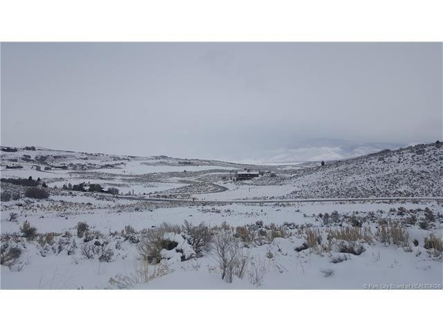 9881 N Uinta Drive, Heber City, UT 84036 (MLS #11801634) :: High Country Properties