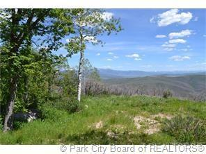 2980 Forest Meadow Road, Wanship, UT 84017 (MLS #11802917) :: The Lange Group