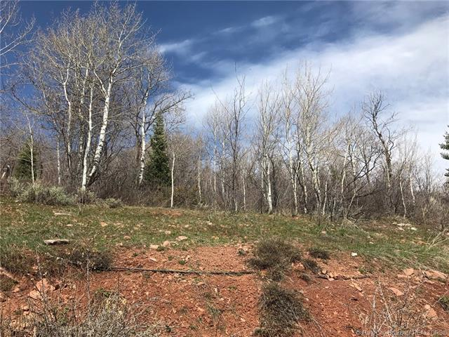 7091 Stagecoach Drive, Park City, UT 84098 (MLS #11803364) :: High Country Properties
