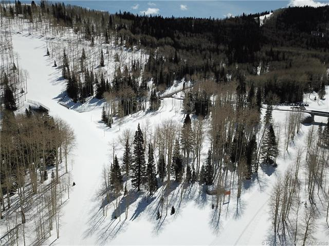 268 White Pine Canyon Road, Park City, UT 84060 (MLS #11803417) :: High Country Properties