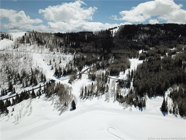 269 White Pine Canyon Road, Park City, UT 84060 (MLS #11803418) :: The Lange Group