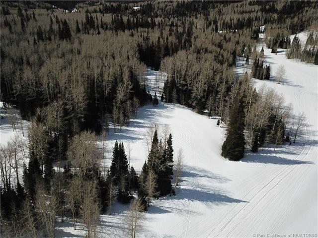 270 White Pine Canyon Road, Park City, UT 84060 (MLS #11803421) :: The Lange Group