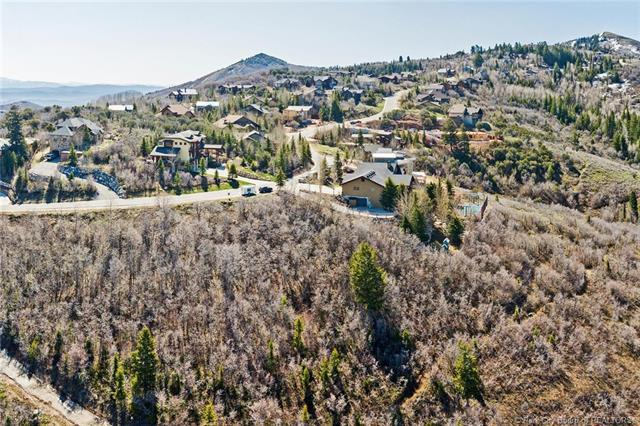 7341 Pine Ridge Drive, Park City, UT 84098 (MLS #11803654) :: The Lange Group