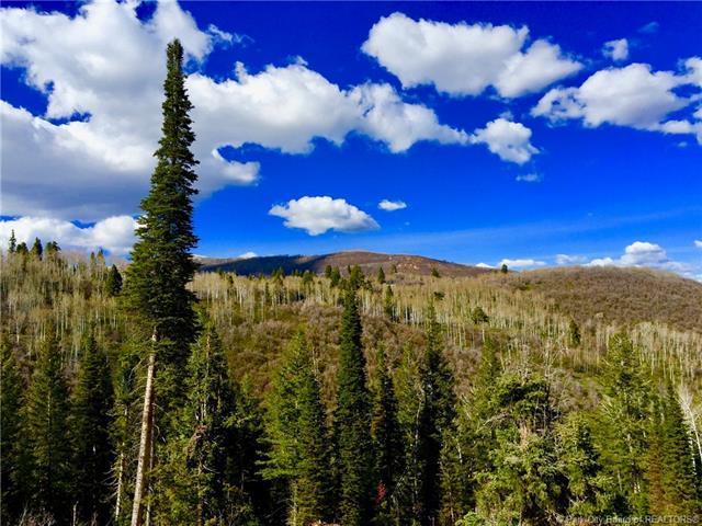 483 Porcupine Loop, Wanship, UT 84017 (MLS #11803658) :: High Country Properties