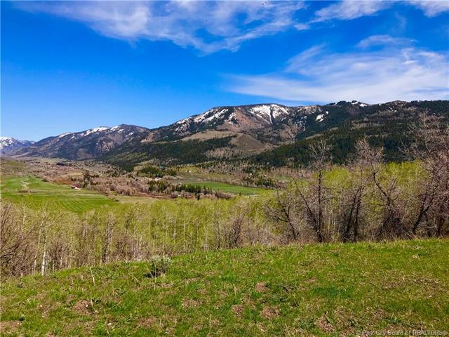 113 Mountain View Road, Oakley, UT 84055 (MLS #11803791) :: High Country Properties