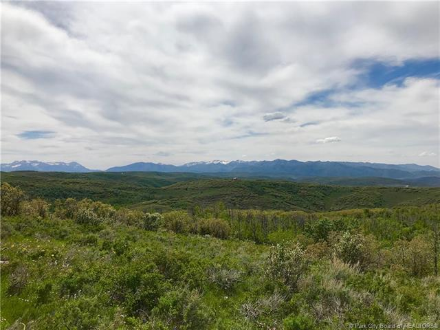 42 Aspen Hollow Road, Woodland, UT 84036 (MLS #11804241) :: High Country Properties