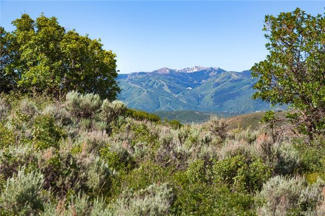 557 Canyon Gate Road, Park City, UT 84098 (MLS #11804245) :: High Country Properties