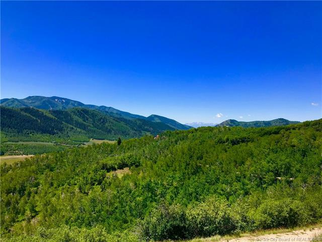 131 Mountain View Road, Oakley, UT 84055 (MLS #11804613) :: High Country Properties