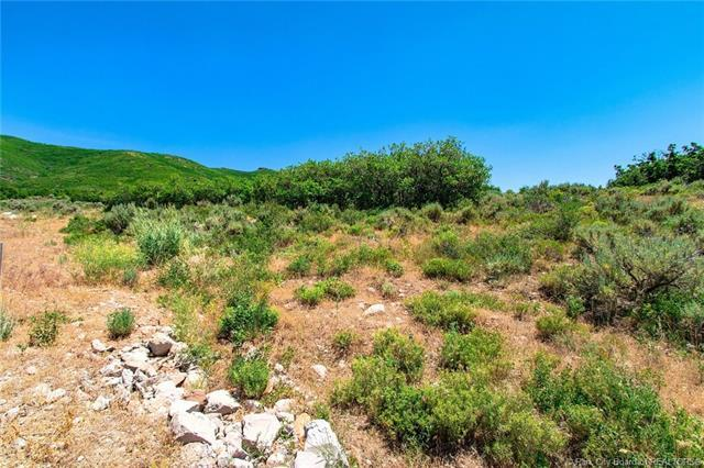 11552 N White Tail Court, Hideout, UT 84032 (MLS #11804623) :: The Lange Group