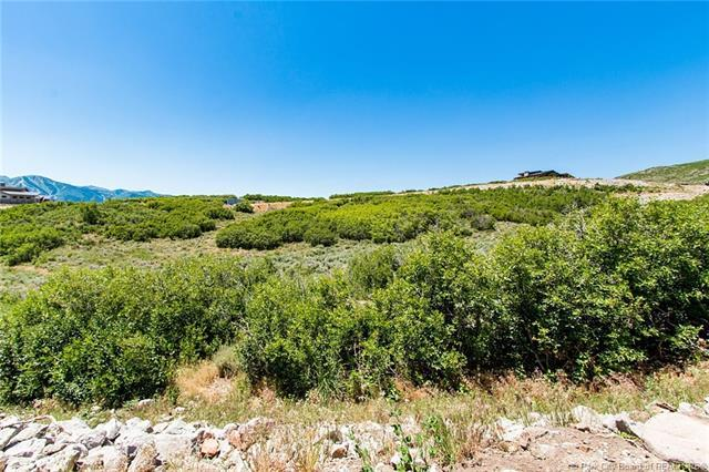 11375 N Fox Hollow Court, Hideout, UT 84036 (MLS #11804627) :: The Lange Group