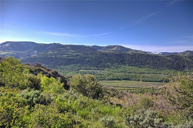 149 Mt. Aire Lower Loop, Oakley, UT 84055 (MLS #11804941) :: High Country Properties