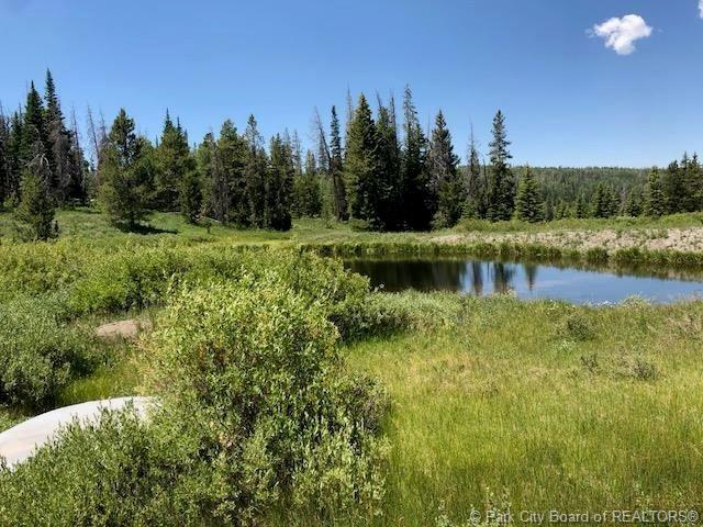 9 Uintah Pines Drive, Other City - Utah, UT 84017 (MLS #11805051) :: The Lange Group