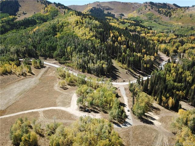 303 White Pine Canyon Road, Park City, UT 84060 (MLS #11806082) :: The Lange Group