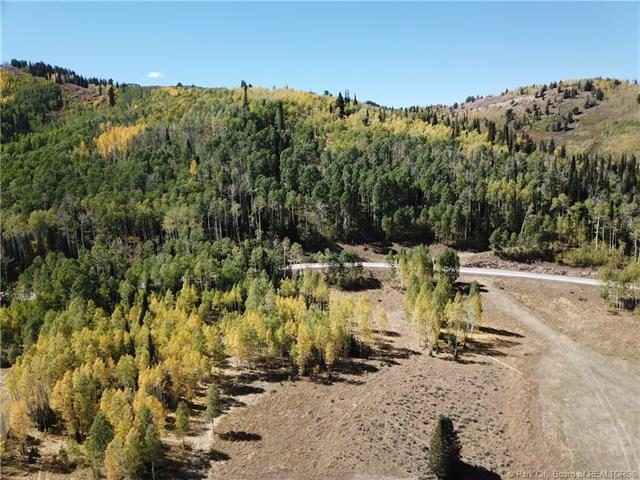 304 White Pine Canyon Road, Park City, UT 84060 (MLS #11806083) :: The Lange Group