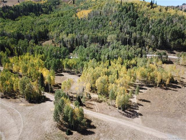 305 White Pine Canyon Road, Park City, UT 84060 (MLS #11806084) :: The Lange Group