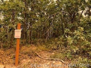 1599 S Spur Wood Drive, Heber City, UT 84032 (MLS #11806204) :: The Lange Group
