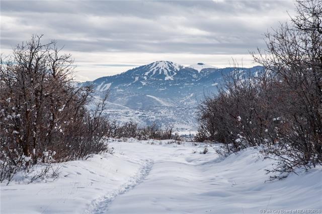 1450 Red Hawk Trail, Park City, UT 84098 (MLS #11808237) :: Lookout Real Estate Group