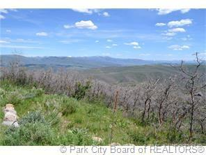 2980 Forest Meadow Road, Wanship, UT 84017 (MLS #11900330) :: High Country Properties