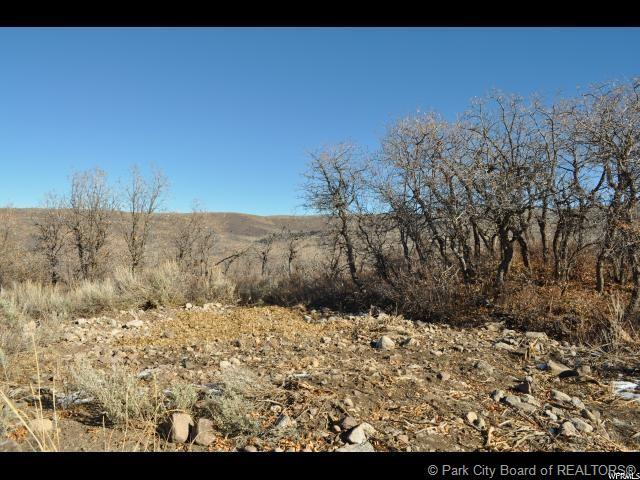 2771 Timber Lakes Drive, Heber City, UT 84032 (MLS #11901451) :: High Country Properties