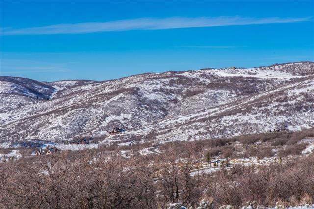 1735 Red Hawk Trail, Park City, UT 84098 (MLS #11901454) :: Lookout Real Estate Group