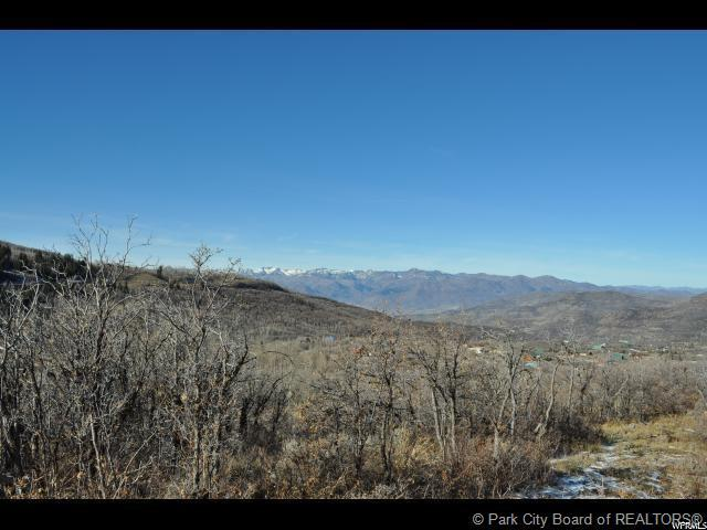 2807 Timber Lakes Drive, Heber City, UT 84032 (MLS #11901464) :: High Country Properties