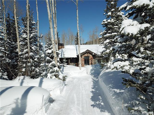 228 White Pine Canyon Road, Park City, UT 84060 (MLS #11901524) :: High Country Properties