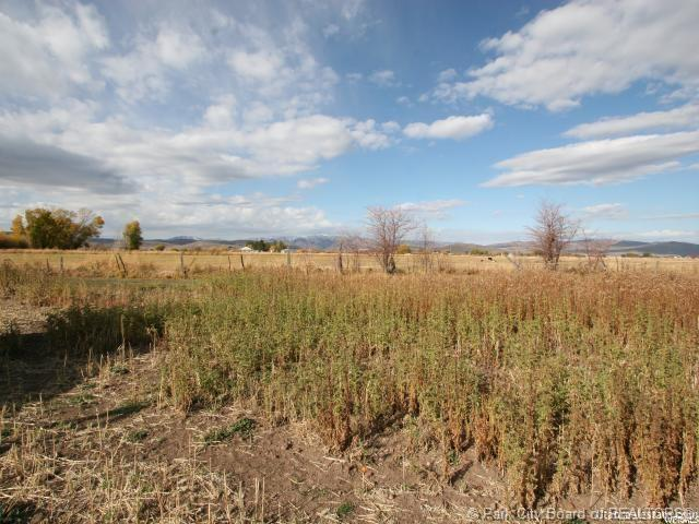 1586 S Stewart Lane, Woodland, UT 84036 (MLS #11901810) :: Lawson Real Estate Team - Engel & Völkers