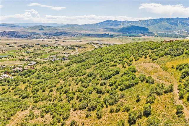 1655 Red Hawk Trail, Park City, UT 84098 (MLS #11903243) :: High Country Properties