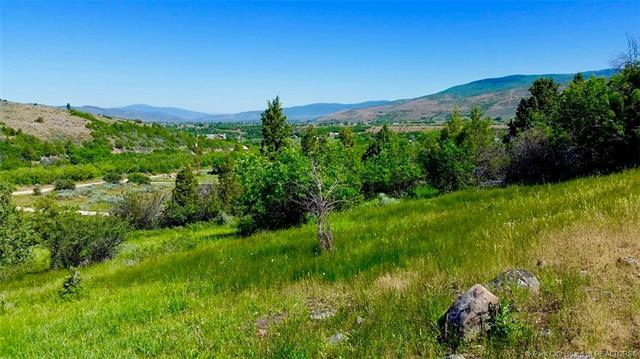 114 Woodland View Drive, Woodland, UT 84036 (MLS #11903248) :: High Country Properties