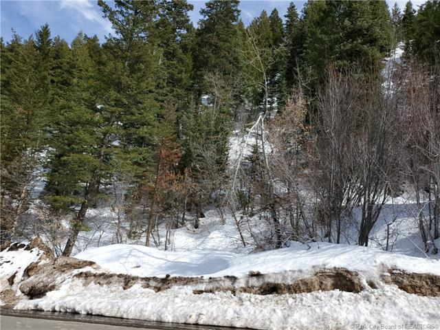 675 Parkview Drive, Park City, UT 84098 (MLS #11903267) :: High Country Properties
