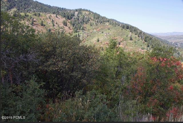 7144 Canyon Drive, Park City, UT 84098 (MLS #11906815) :: High Country Properties